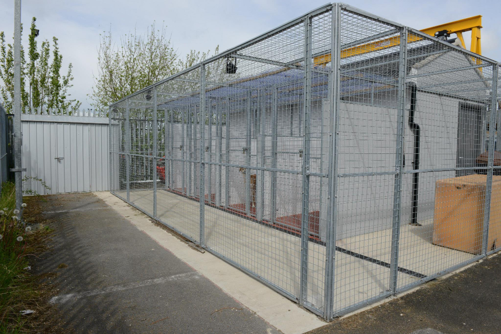 Dog Kennels Darlington